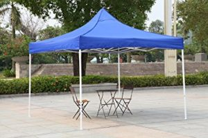 American Phoenix Portable Event Canopy Tent