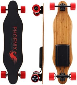 Alouette Phoenix Ryders Electric Skateboard Dual Motors