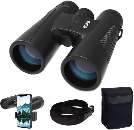 Borio 12x42 Roof Prism Binoculars